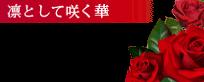 錦糸町デリヘル 待ち合わせ型 人妻デリバリーヘルス『秘密倶楽部 凛 錦糸町店』まりあ【綺麗系】