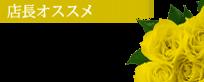 錦糸町デリヘル 待ち合わせ型 人妻デリバリーヘルス『秘密倶楽部 凛 錦糸町店』莉紗【店長いち押し】
