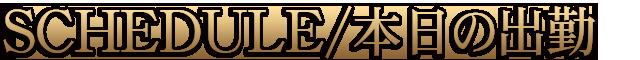 錦糸町デリヘル 待ち合わせ型 人妻デリバリーヘルス『秘密倶楽部 凛 錦糸町店』【FIRST STAGE】出勤情報