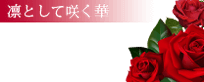 『秘密倶楽部 凛 TOKYO』錦糸町デリヘル 待ち合わせ型 人妻デリバリーヘルス【凜として咲く華】