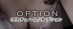 『秘密倶楽部 凛 TOKYO』錦糸町デリヘル 待ち合わせ型 人妻デリバリーヘルスコスチューム・オプション