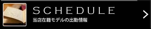 『秘密倶楽部 凛 TOKYO』錦糸町デリヘル 待ち合わせ型 人妻デリバリーヘルス出勤情報